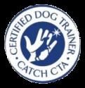 Catch Academy Logo
